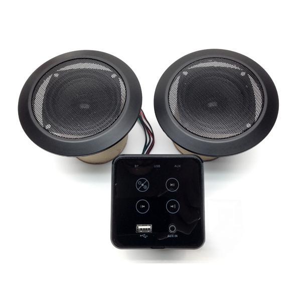 Sistema de áudio com subwoofer