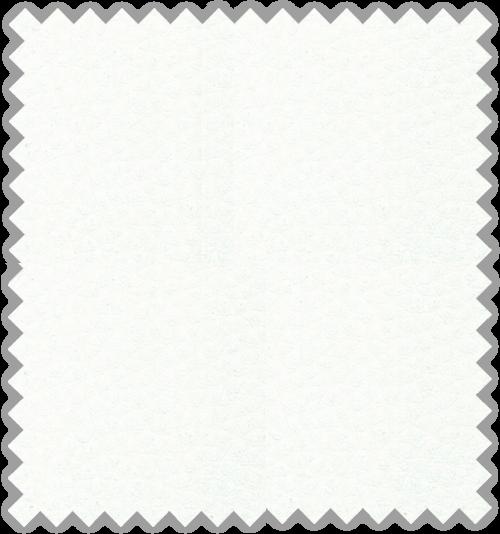 Bisonte C-101