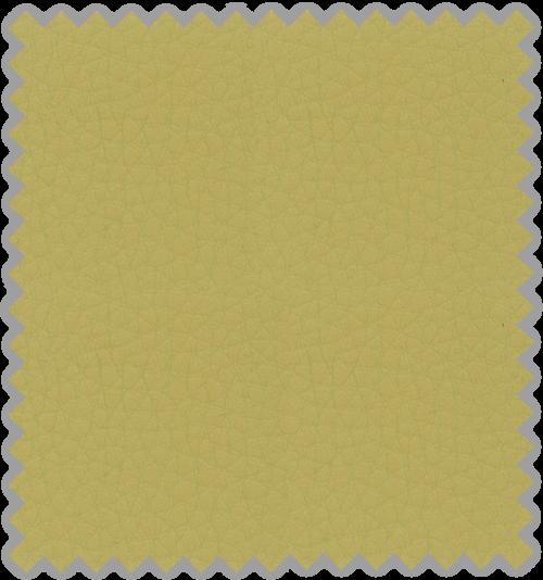 Bisonte C-103
