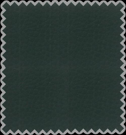 Bisonte C-107