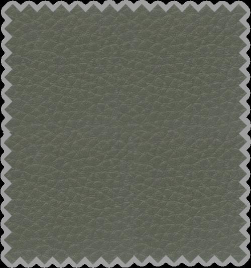 Bisonte C-205