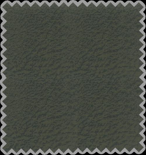 Kenya C/572-Olive